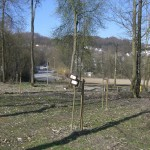 Babywald EN 2