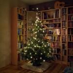 Mein erstes Weihnachtsfest