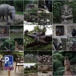Zoo Leipzig 05